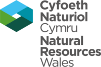 Natural Resource Wales logo