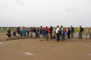 Walking across Morecambe Bay to Piel Island (Islands of Barrow Walking Festival)